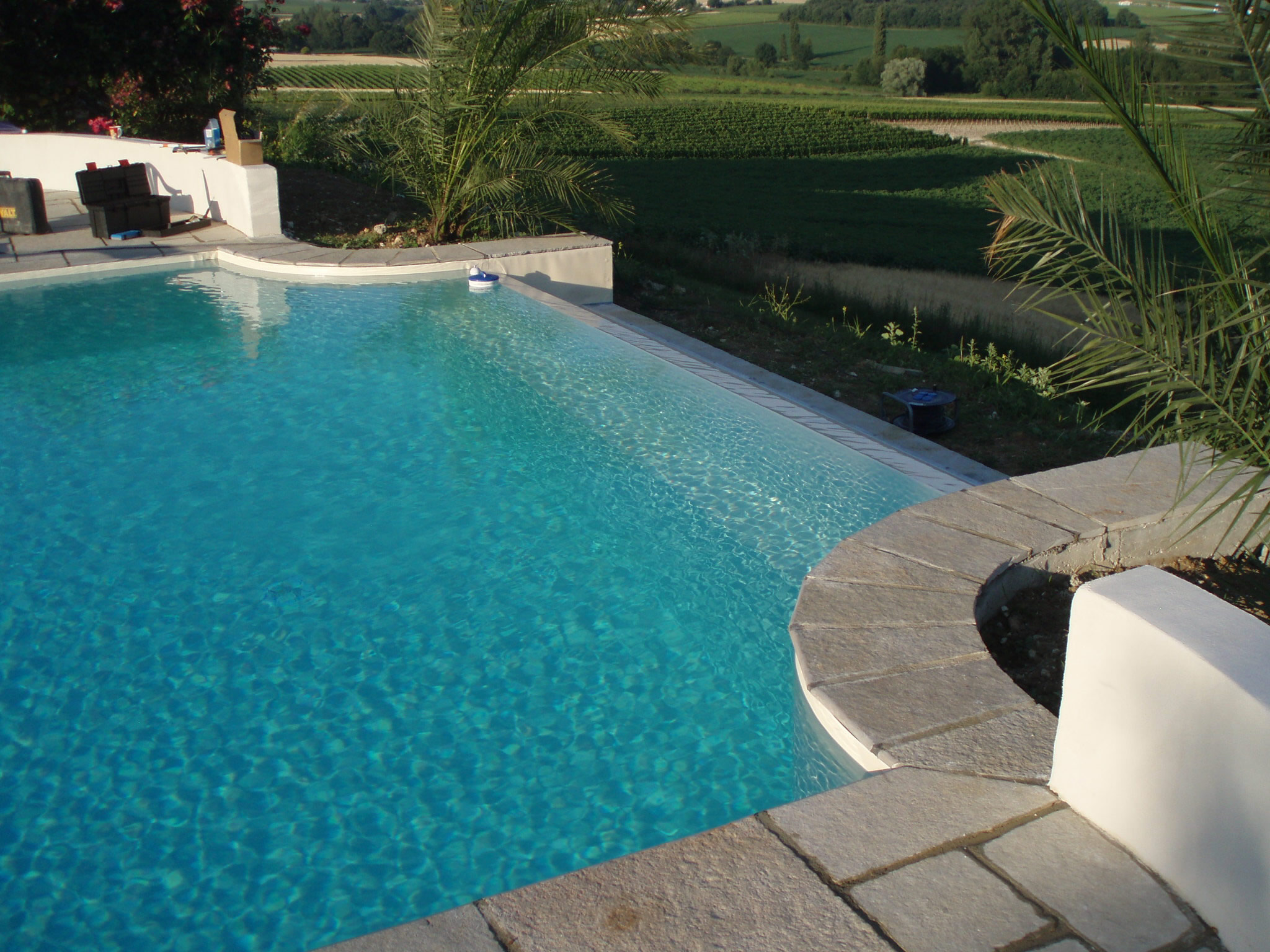 Infinity edge swimming pools and their cost for Pool design details